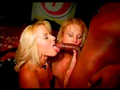 Big cocks bang hot party girls