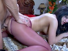 Half in the nude dark haired gives head and has anus made love thru her crotchless hose