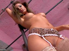 Stunning beauty Sandy in lace stockings worn with garter belt
