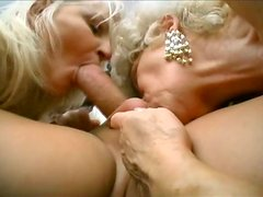 Hot tempered grannies give blowjob to kinky dick