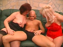 Two feisty grannies Remy and Paula are giving double blowjob