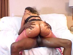 Fat oiled black ass fucked hard by black dick