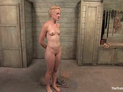 Short-haired blonde Dylan enjoys being fucked while tied up
