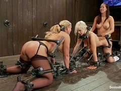 Two blonde girls get bonded and fucked with strapon