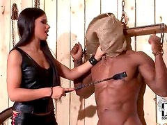 Black guy in bondage abused by mistress