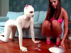 Girl in latex catsuit licks milk from bowl