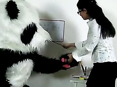 Sexy teacher for horny Panda bear