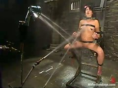 Nice Riley Mason get humiliated in hot BDSM video