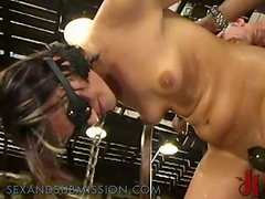 Brunette Bitch Adores Being Tied Up Like An Animal & Pummeled