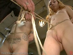 Plenty Blonde and Brunette Babes Kneel and Get Tied Up In BDSM Vid