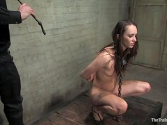 Sexy Brunette Sucks Her Master's Cock While Chained By The Neck