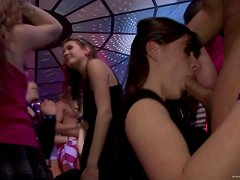Drunk Hotties Have Sex In A Party