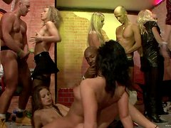 A Hot PArty Scene With Drunk Sluts