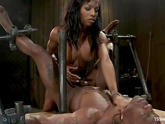 Jack Hammer and Natassia Dream suck each other's cocks in BDSM clip
