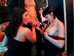 Lascivious hotties are always ready for hardcore orgy party