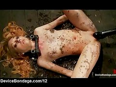 Waxed babe locked down gets pussy toyed