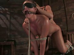 Brunette girl gets whipped and toyed by Felony