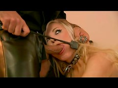 Leather boots and collar on cocksucking blonde
