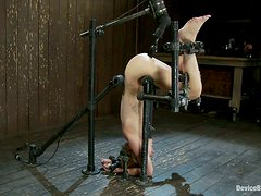 Bondage Leaves Dylan Ryder's Pussy Exposed for Toying
