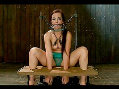 A couple of chicks are kinky victims of bondage device