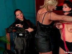 Sub girl flogged on the ass and gagged