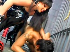 Slender mistress is humiliating her slave in the cage