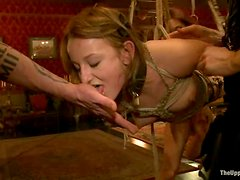 Hot chicks get tied up, fisted and toyed at the party