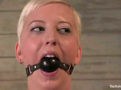 Short-Haired Blonde Cherry Torn Bounded for Torture and Toying and Sex