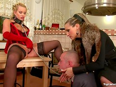 Woman in control of two submissives