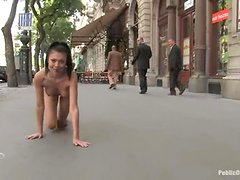 Divine brunette puts on a head harmess and gets fucked in public