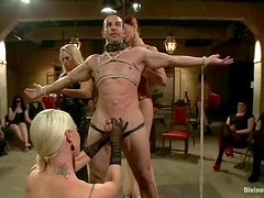 Femdom Reverse Gangbang with Pegging Action for One Submissive Guy
