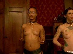 Hot BDSM video with hot chicks getting tied up and face fucked