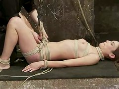 Hardcore humiliation over a slender chick Amber Rayne