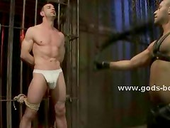 Suspended and tied up gay slave gets his asshole probed and fucked hard by a man