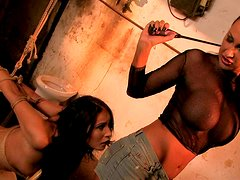 Touhg mistress with big boobs ties up brunette chick in tricky position