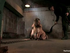 Calico gets chained and mouth fucked and enjoys it