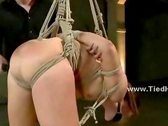 Lovely whore gets tied up and suspended while a horny and dominating man fucks her throat