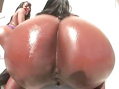 Black Ass Twerk Fest Music Video 02 GLHQ