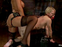Ash Hollywood gets tortured with electricity and toyed hard