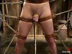 Horny and sexy dominatrix rides her slave's dick