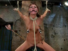 Perverted couple are torturing this gorgeous babe Cassandra Nix