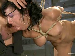 Booty and exotic brunette gets to suck her master's cock