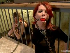 Two submissive girls get brutally fucked by Mark Davis in BDSM scene