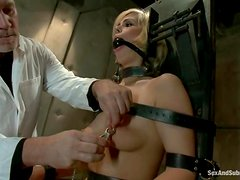 Tara Lynn Foxx gets bound and stunningly fucked by Mark Davis