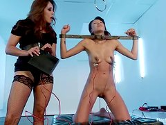 Asian sex slave gets a spreader bar and a huge strapon