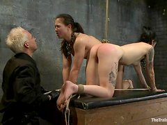 Horny brunette chicks get whipped and toyed in a basement