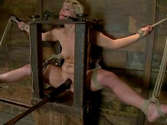 Blonde Tara Lynn Foxx in gets toyed in hot bondage video