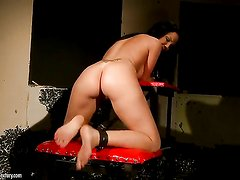 Blonde Kathia Nobili offers her muff pie to lesbian Chanel