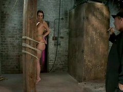 Beautiful Katie Jordin gets tied up to a wooden post