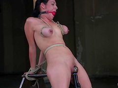 Busty chick gets tied up and seated on that device